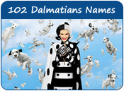 102 Dalmatians Dog Names