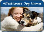 Affectionate Dog Names