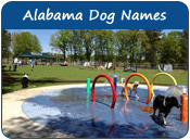 Alabama Dog Names