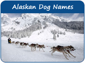 Alaskan Dog Names
