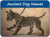 Ancient Dog Names