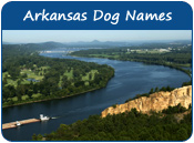 Arkansas Dog Names