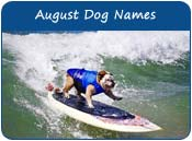 August Dog Names