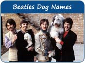 Beatles Dog Names