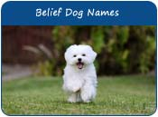 Belief Dog Names