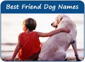 Best Friend Dog Names