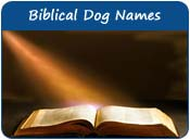 Biblical Dog Names