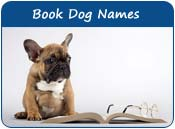 Book Dog Names