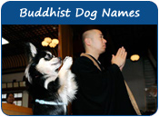 Buddhist Dog Names