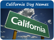 California Dog Names