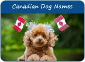 Canadian Dog Names