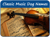 Classical Music Dog Names