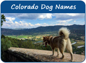 Colorado Dog Names