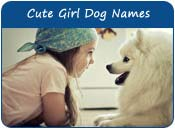Cute Girl Dog Names