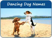 Dancing Dog Names