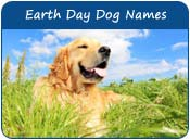 Earth Day Dog Names