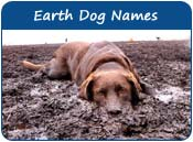Earth Dog Names
