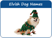 Elvish Dog Names