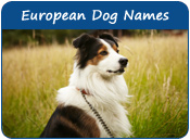 European Dog Names