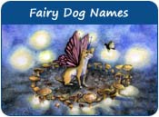 Fairy Dog Names