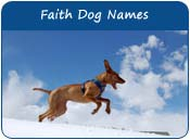 Faith Dog Names