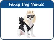 Fancy Dog Names