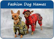 Fashion Dog Names