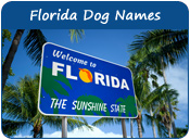 Florida Dog Names