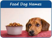 Food Dog Names