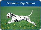 Freedom Dog Names