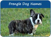 Frengle Dog Names