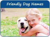 Friendly Dog Names