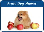 Fruit Dog Names