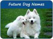 Future Dog Names