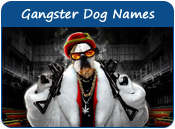 Gangster Dog Names