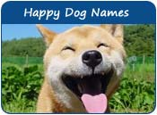Happy Dog Names