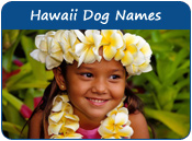 Hawaii Dog Names