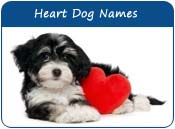 Heart Dog Names