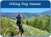 Hiking Dog Names
