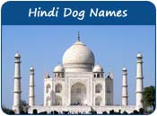 Hindi Dog Names