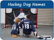 Hockey Dog Names