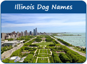 Illinois Dog Names