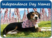 Independence Day Dog Names