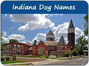 Indiana Dog Names