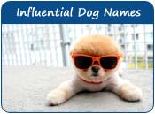 Influential Dog Names