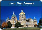 Iowa Dog Names