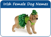Irish Female Dog Names