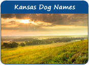 Kansas Dog Names