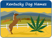 Kentucky Dog Names