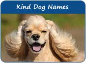Kind Dog Names